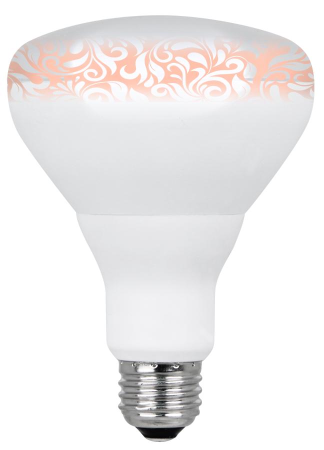 Which Light Bulb Types Do I Need Huevee